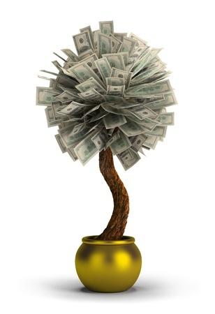 Hochzeitsgeschenk Geldbaum